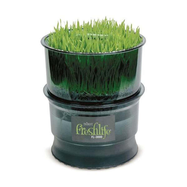 FreshLife germination machine